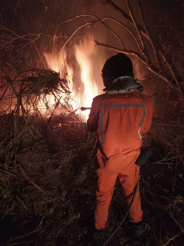 Bombeiro combate incêndio próximo ao Parque Serra da Capivara, no Piauí — Foto: Divulgação/Corpo de Bombeiros