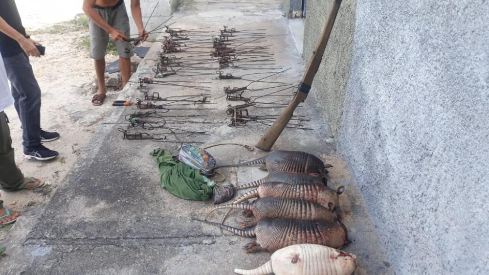 Animais e armas são apreendidos pela Polícia Ambiental
