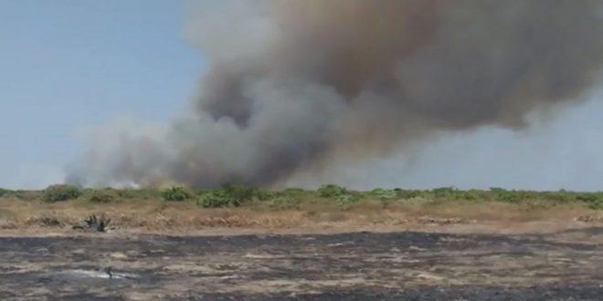 Incêndio atinge vegetação na BR-324 na cidade de Canto do Buriti